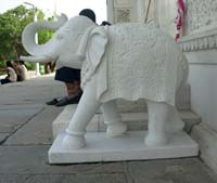Rukmani arts  animalfigures   Code 62