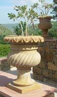 Rukmani arts  flowerpots   code 23